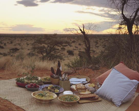 Bush picnics