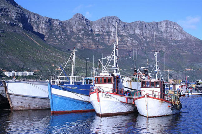Harry Comfort_Fishing Boats in Hout Bay