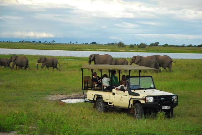 Sanctuary Chobe Chilwero 1
