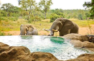 Motswari 16 Pool 2